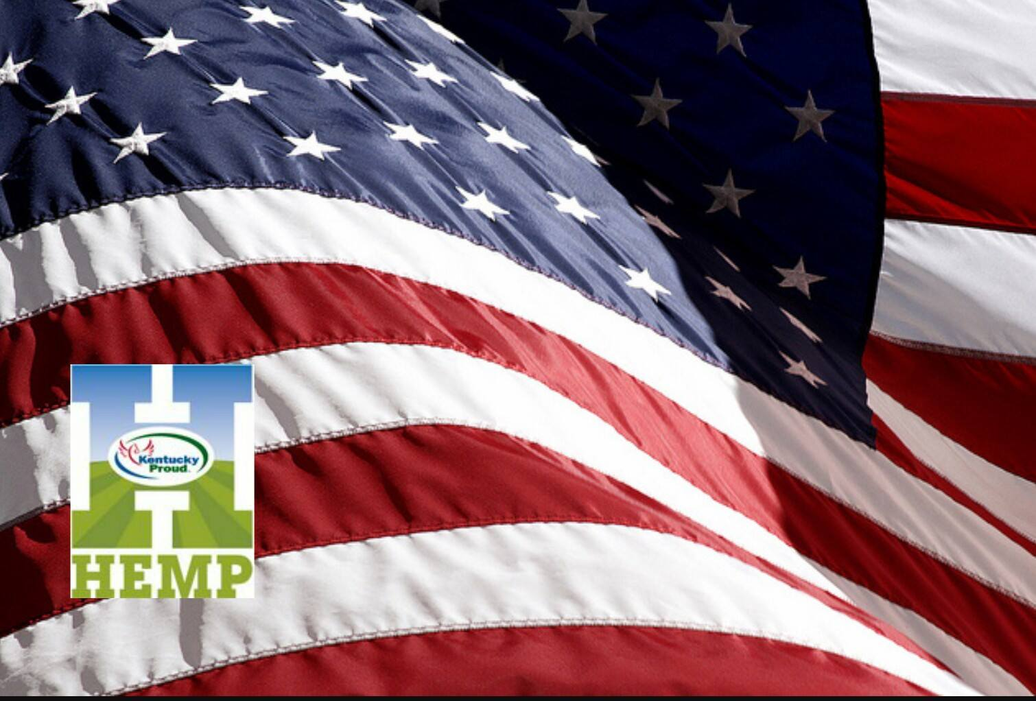 Flag Hemp Logo