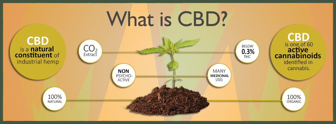 what-is-cbd